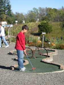 Homegrown Mini-Golf